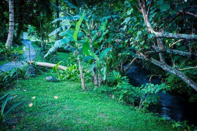 Bali-forest-wedding-venue-Bali-Moon-Wedding
