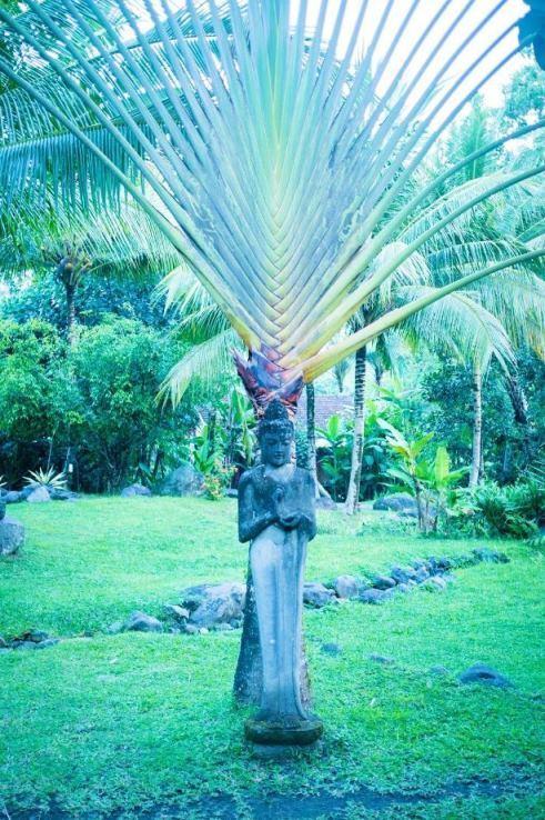 Bali-jungle-wedding-venue-Bali-forest-wedding-venue-Bali-river-side-wedding-venue-Bali-Moon-Wedding